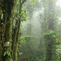 Costa Rica preserves its natural wonders