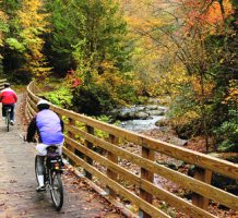 Bike downhill on Virginia's Creeper Trail