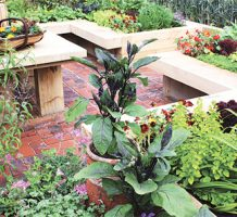 How does your garden grow? Some tips