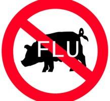 Universal, lifetime flu vaccine on the way