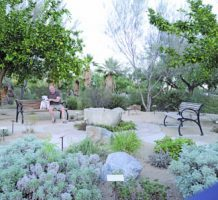 Smell the flowers or unwind at Wellness Park