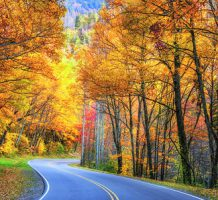 Where and how to enjoy fall foliage's peak