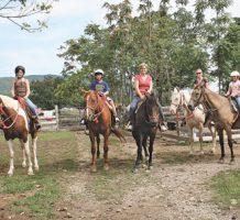 A trip back to rural wonders of yesteryear