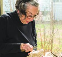 Former politico sculpts a new passion