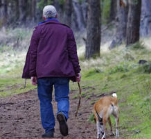 Your pet also needs to have an estate plan