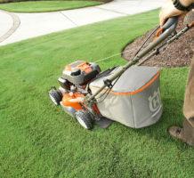 Lawn care of warm-season turfgrass