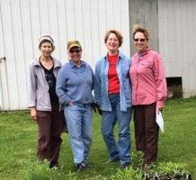 Garden clubs aim for sustainable beauty