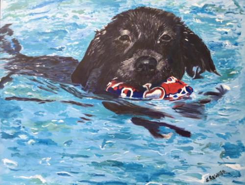 Swimmi' Henry — Sally Regnier