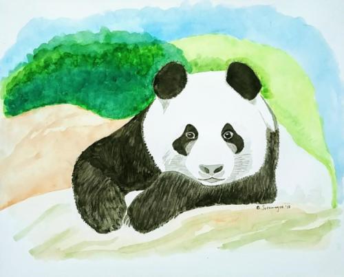 Panda — Alexis Sotomayor