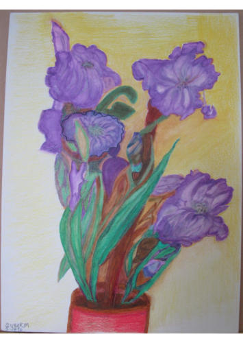 Purple Irises from my Back Yard — Sura Kim