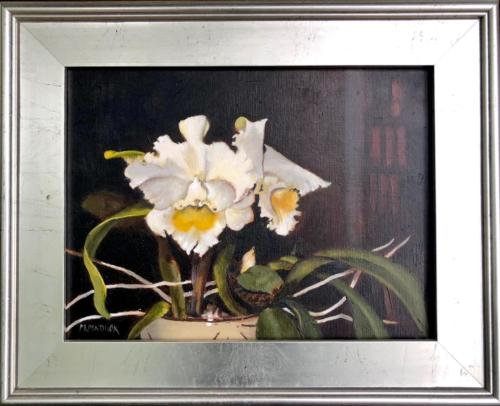 White Orchid — Mary Lou Maddox