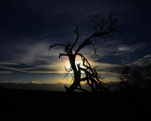 Death Valley sunset — David Satinsky