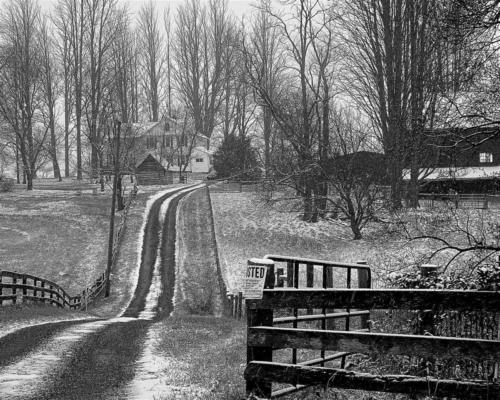 Winter snow dusting at farm in Ellicott City MD — Anita Feintuch