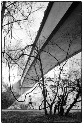 Man, nature and architecture — Rodney Mathis