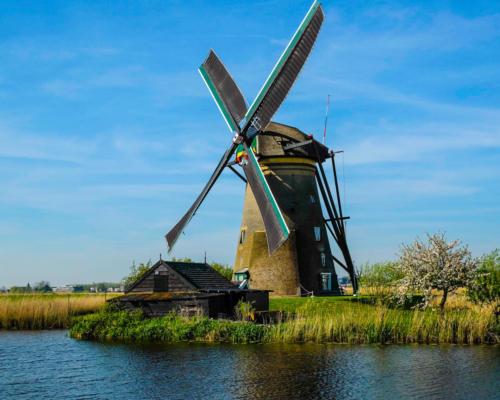Blue Windmill — Warren Walker