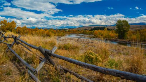 Fall Foliage Splendor — Carol Gregoire