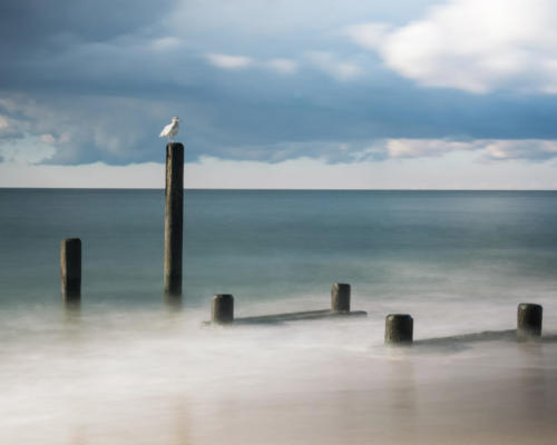 Flowing Pier 2620 - Richard Paul Weiblinger - 3rd Place
