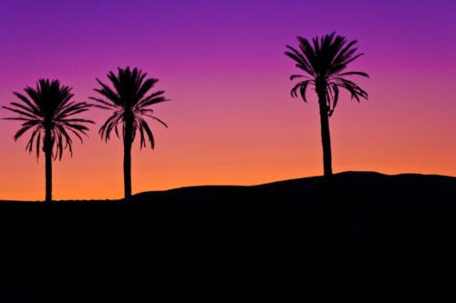Sunset in the Judean Desert - Brad Balfour - Honorable Mention