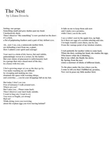 Poetry Winners